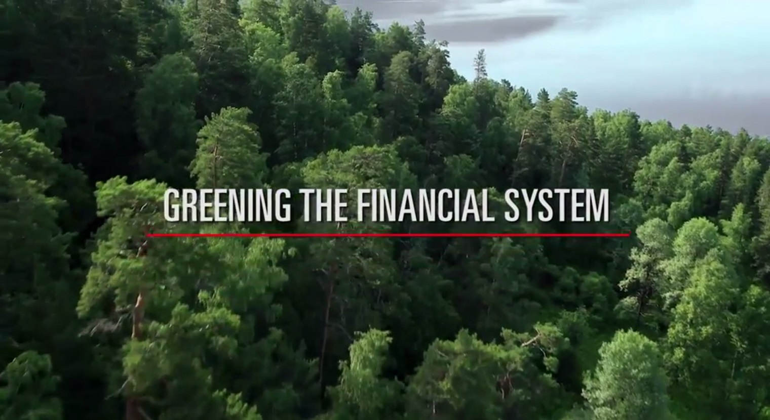 Global financial system becomes greener