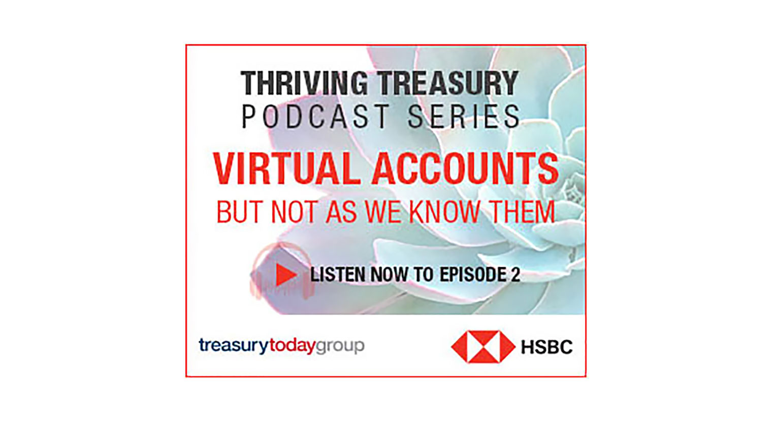 Virtual Accounts Podcast | Insights | HSBC